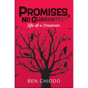 Promises, No Guarantees-Our Books cover