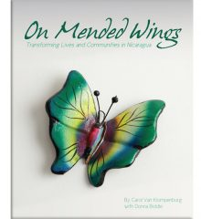 On-Mended-Wings-Our-Books-cover
