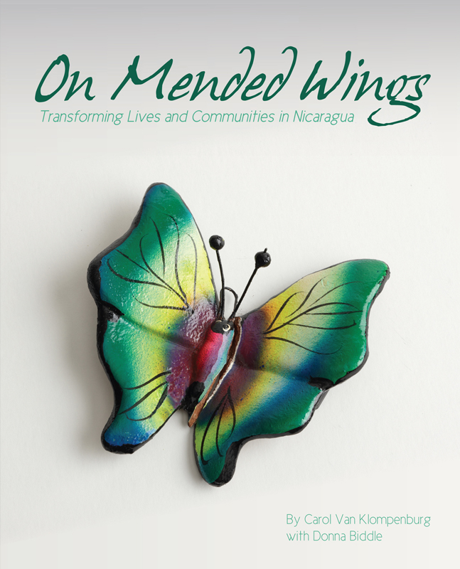 on-mended-wings-cover