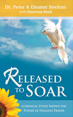 released-to-soar-cover