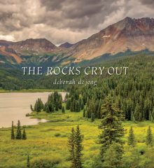 The-Rocks-Cry-Out-Our-Books-cover