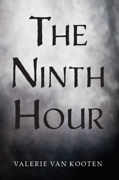 The Ninth Hour book cover